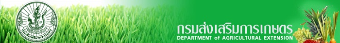 แนวข้อสอบ เจ้าพนักงานธุรการปฏิบัติงาน กรมส่งเสริมการเกษตร (ชายแดนใต้)
